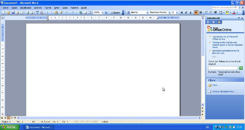 Word Office 2003 valencianitzat